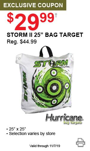 Coupon_Offer3_StormIITarget_081519